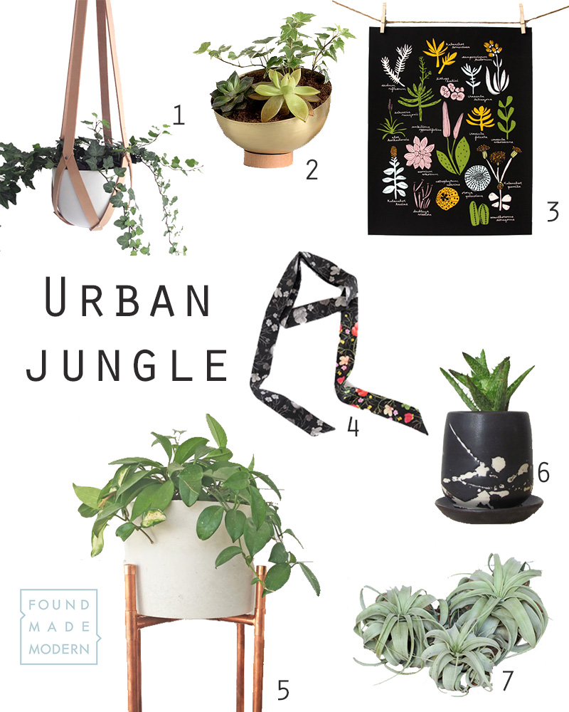 1.  hanging planter  :: Amulettes   2.  brass planter  :: loop design studio     3.  succulent poster  :: Leah Duncan   4.  skinny scarf  :: c. banning accessories  5.  copper + concrete planter  :: Etta and Odie  6.  black ceramic planter  :: Melissa Maya Pottery  7.  xerographica air plants  :: air plant design studio