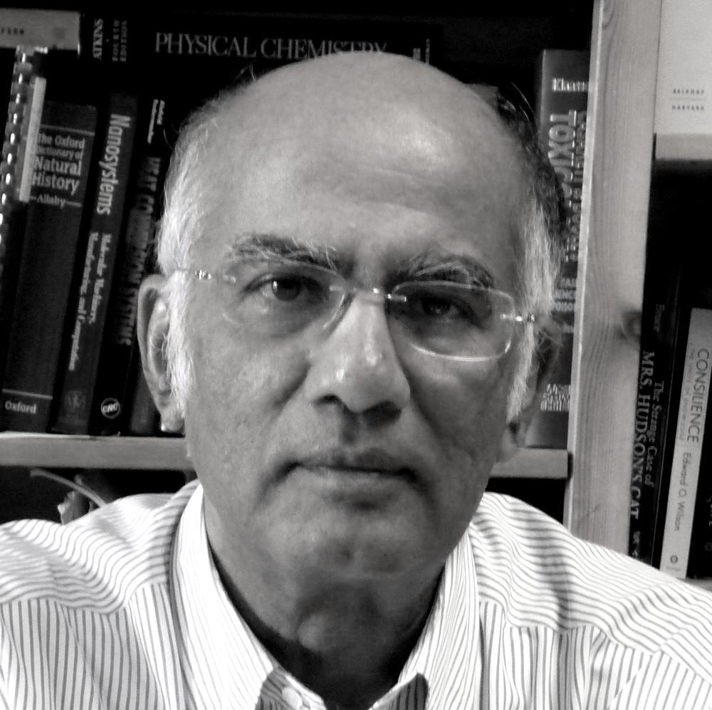 Arjun Makhijani.jpg