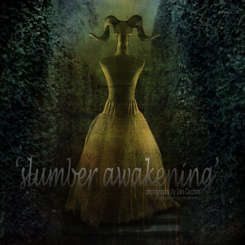 skumber awakening with logo.jpg
