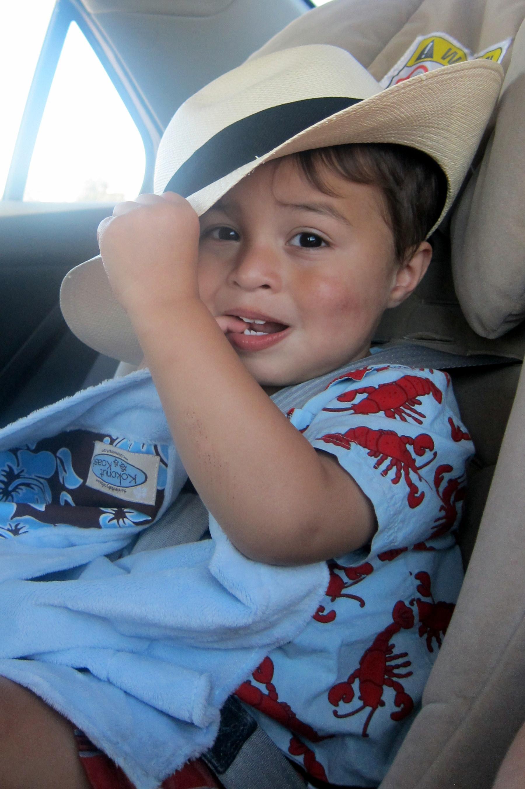 Elian Panama Hat