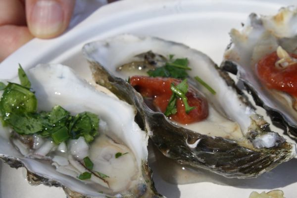 Sweetwater Oysters from Hog Island Oyster Co