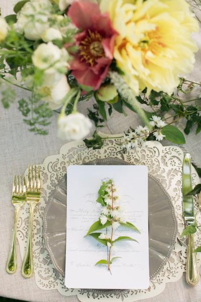Celsia Floral