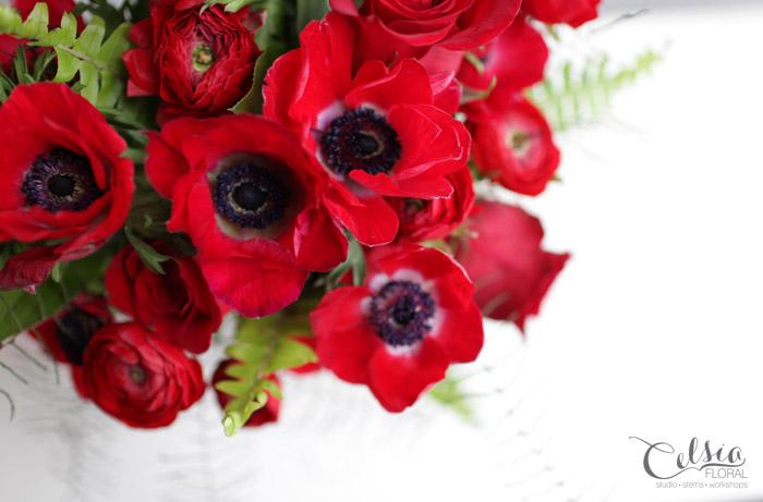 Scarlet, Celsia Floral
