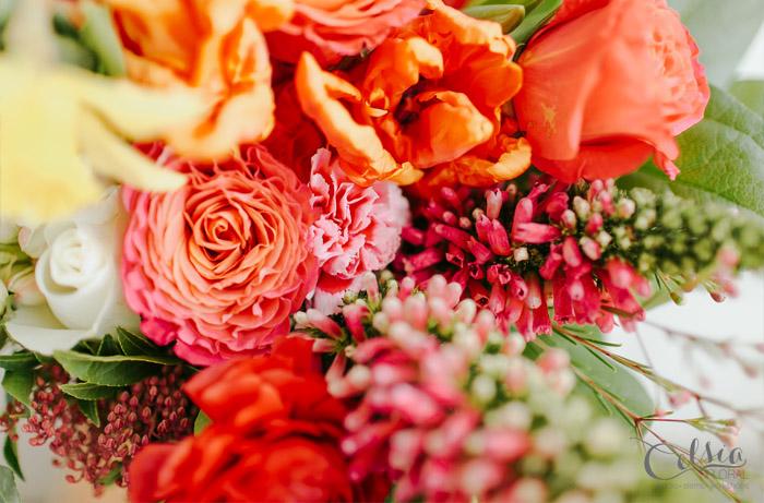 Celsia Signature, Celsia Floral
