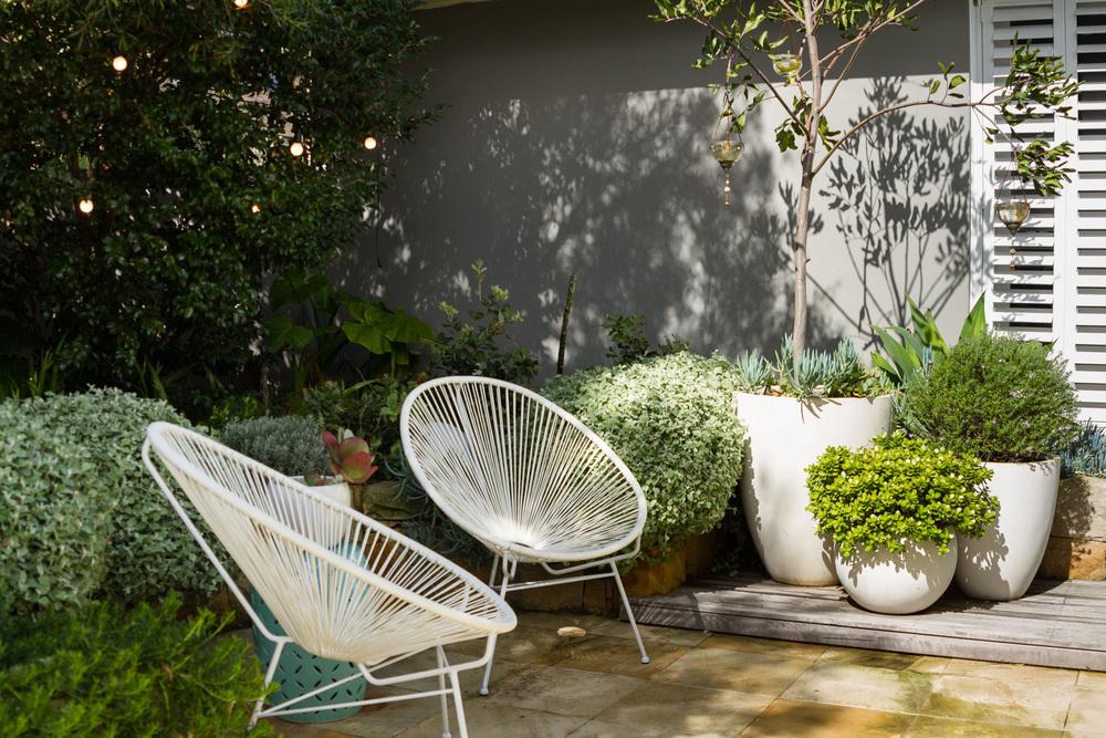 cronulla_residential_garden_design 28.jpg