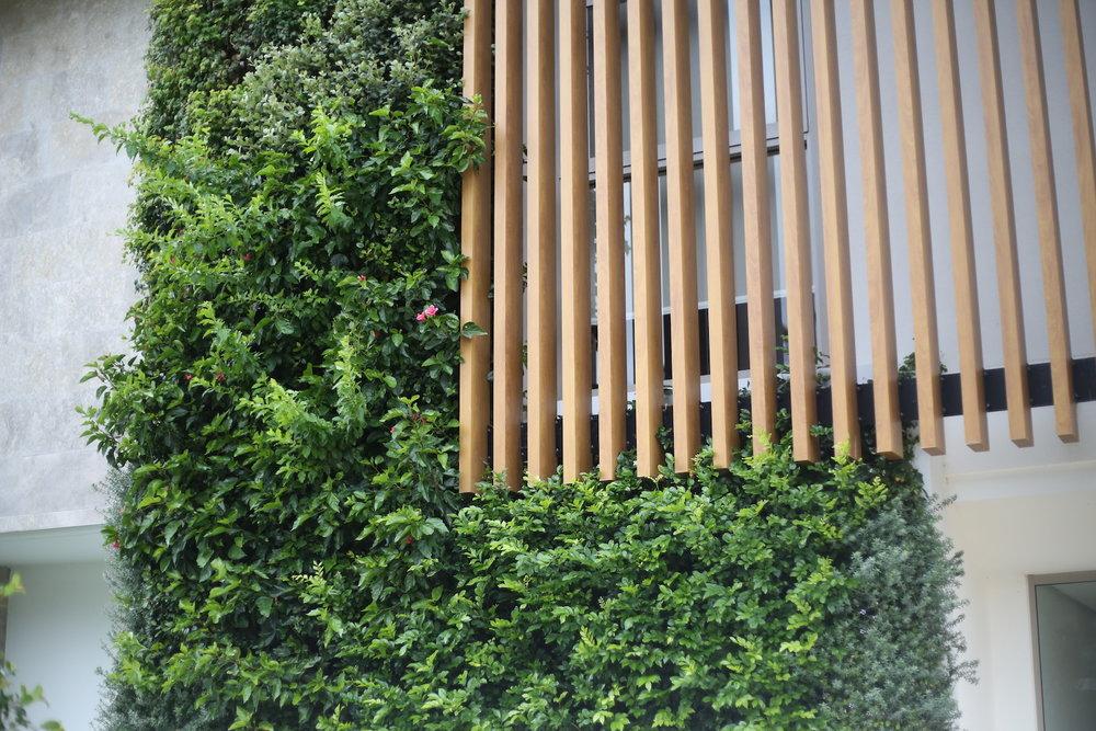Lantern Apartments - South Cronulla  Multi Residential