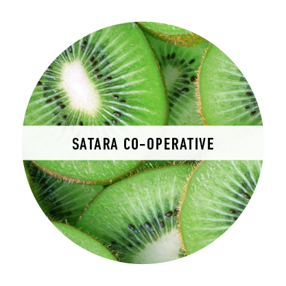 SATARA CO-OPERATIVE.png