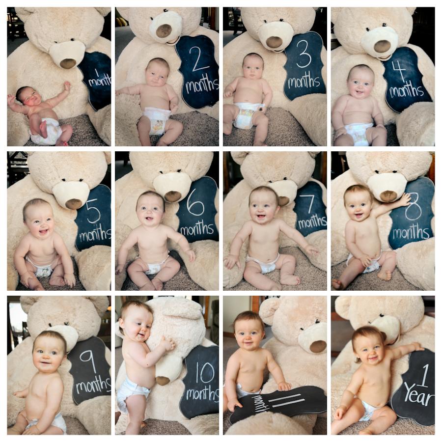 A Year with Teddy