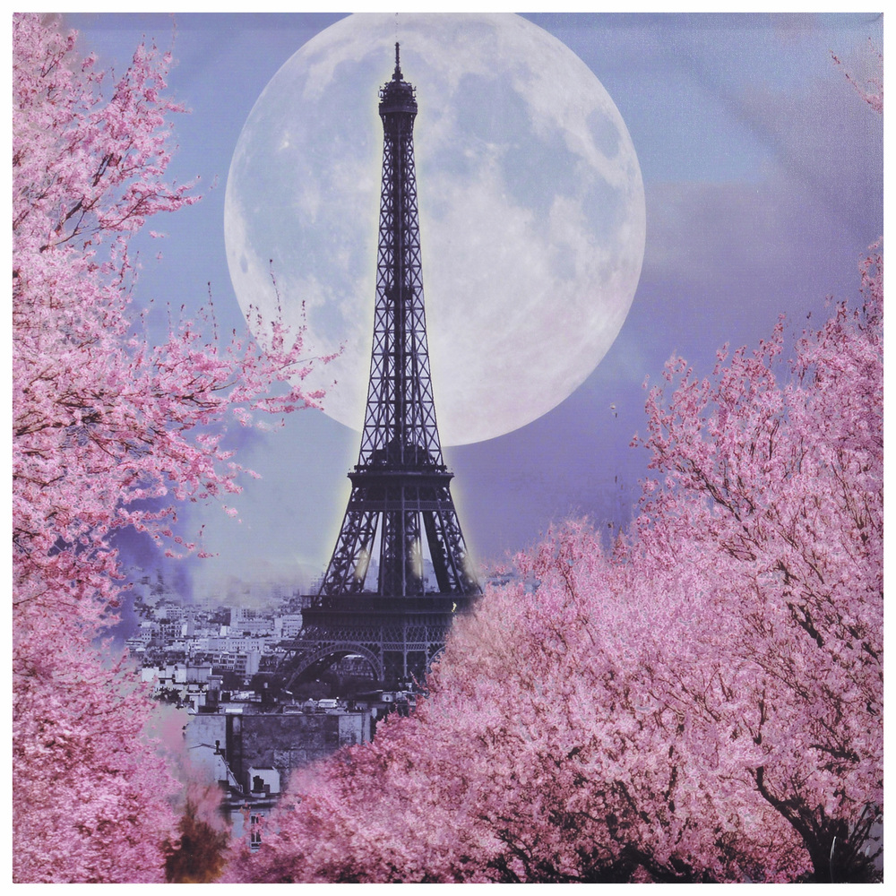 €22 PRINTED CANVAS WALL PAINTING EIFFEL 80Χ80