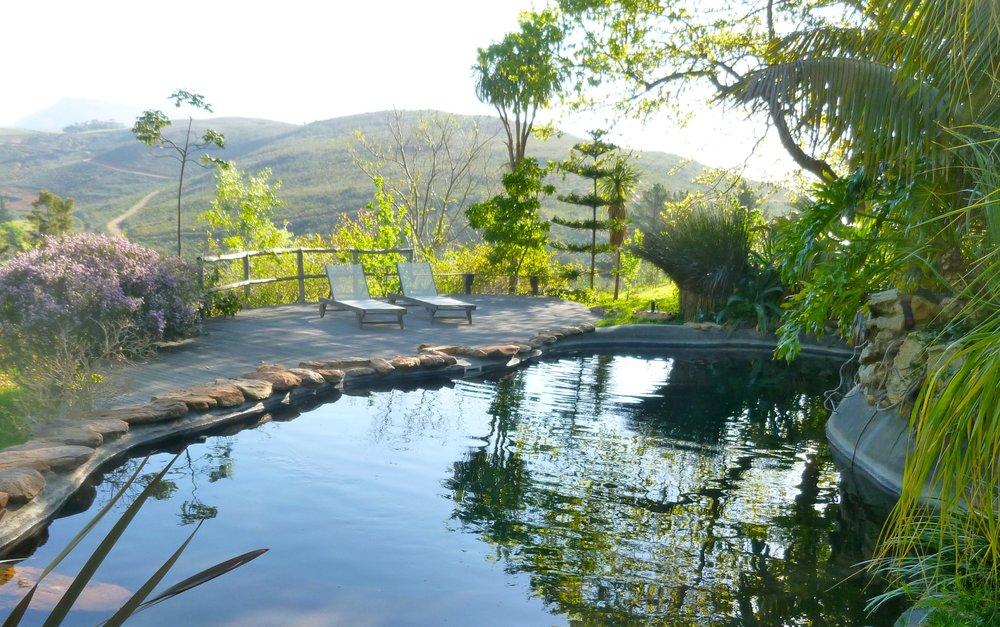 Eyrie Pool 1.jpg