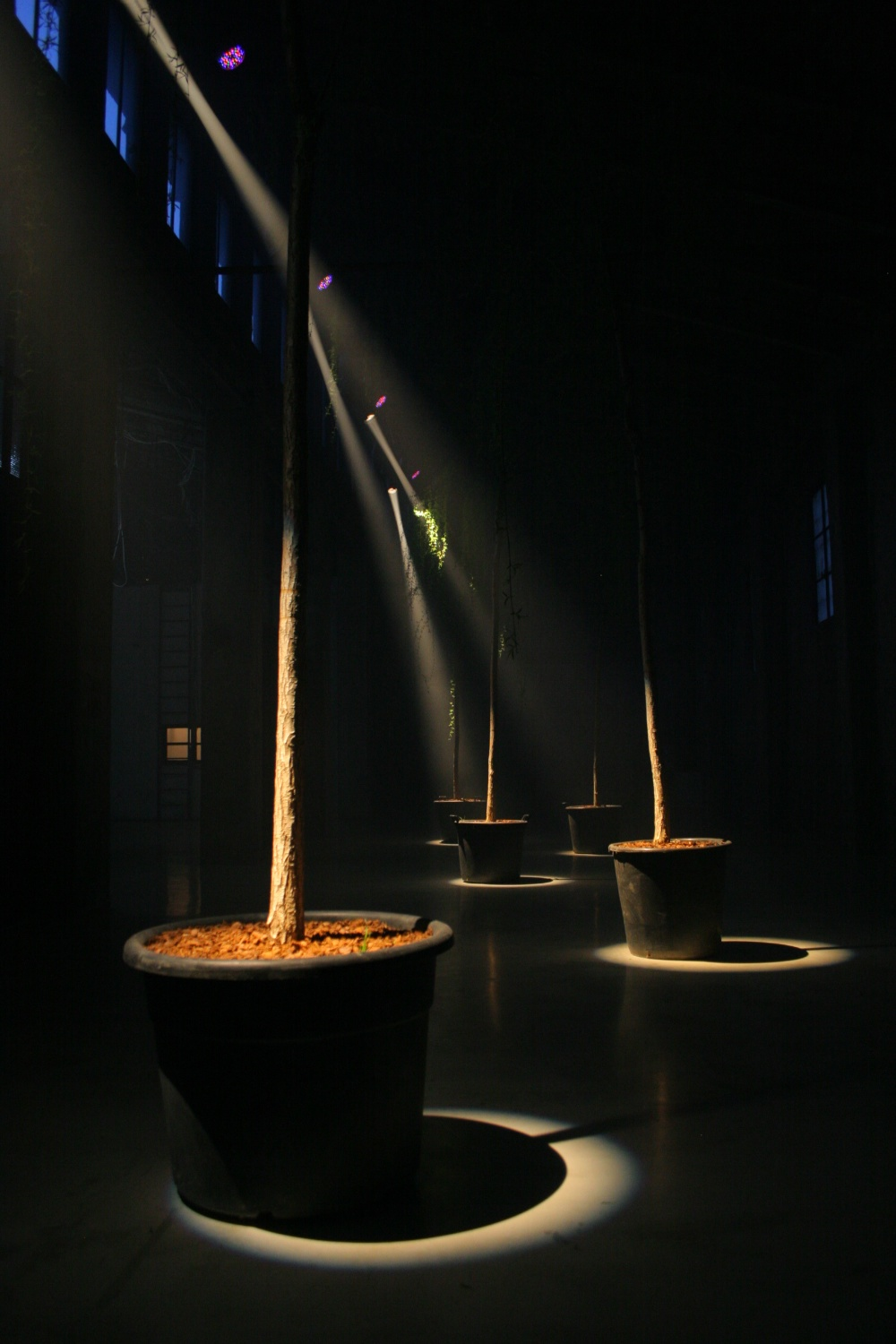 with light regards,