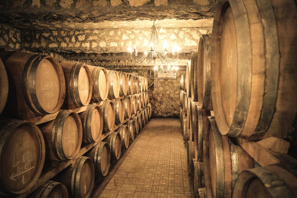 Winery cellar with wine barrels.jpg