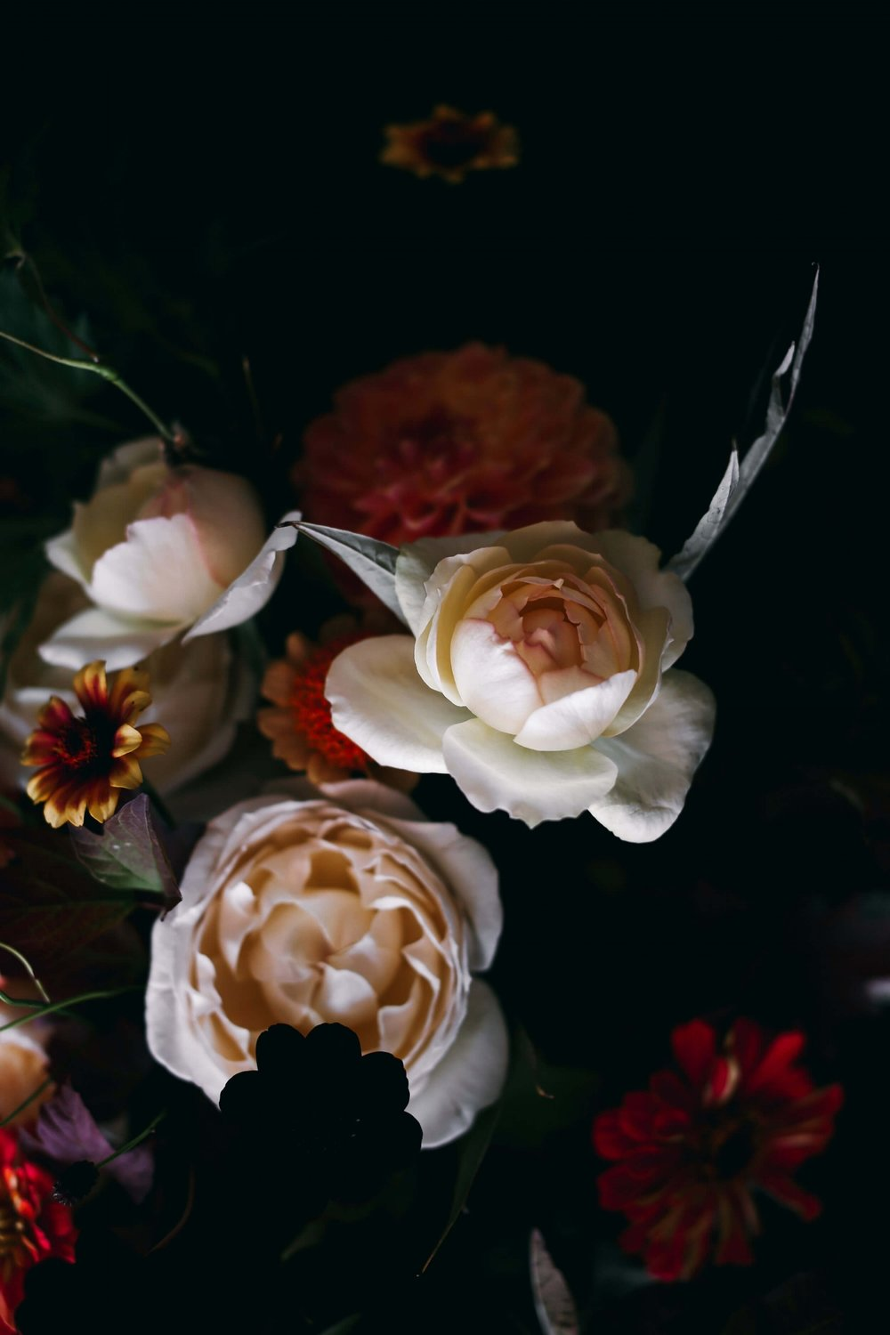 Moody October Florals -