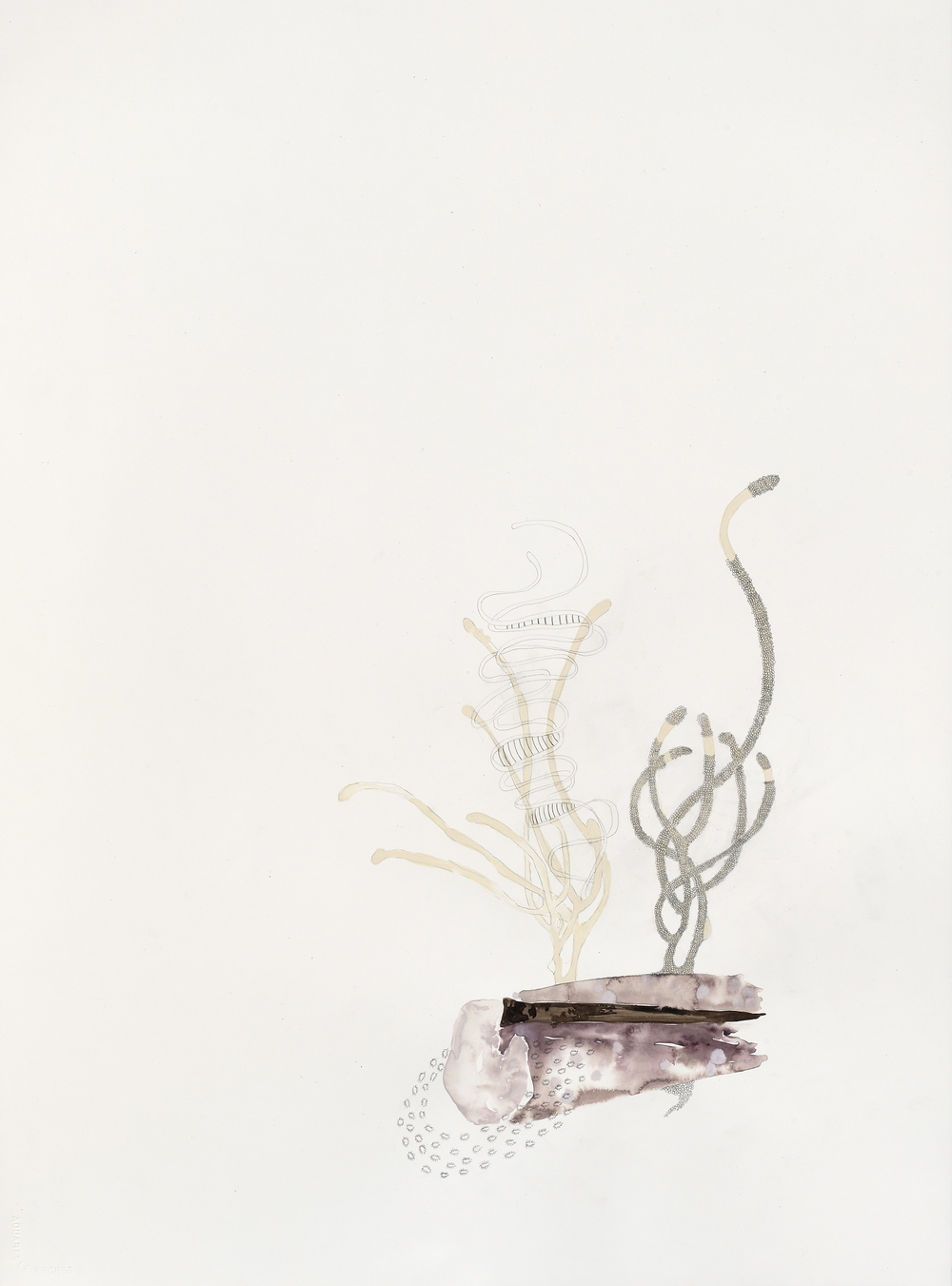 "Gene Extensions,  gouache, graphite on paper, 30"" x 22"", 2010"
