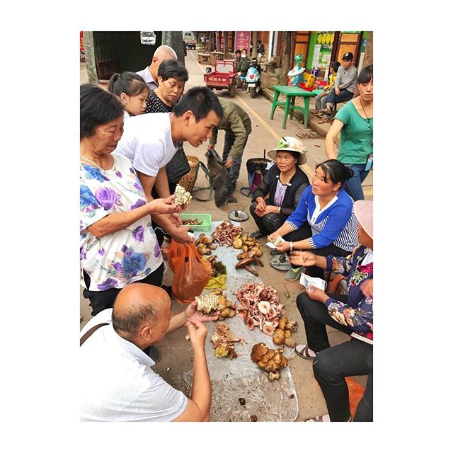 Haggling over fresh mushrooms. We love these local markets and all the fresh produce on offer. #picturedbyus #yunnan #china #shanxi