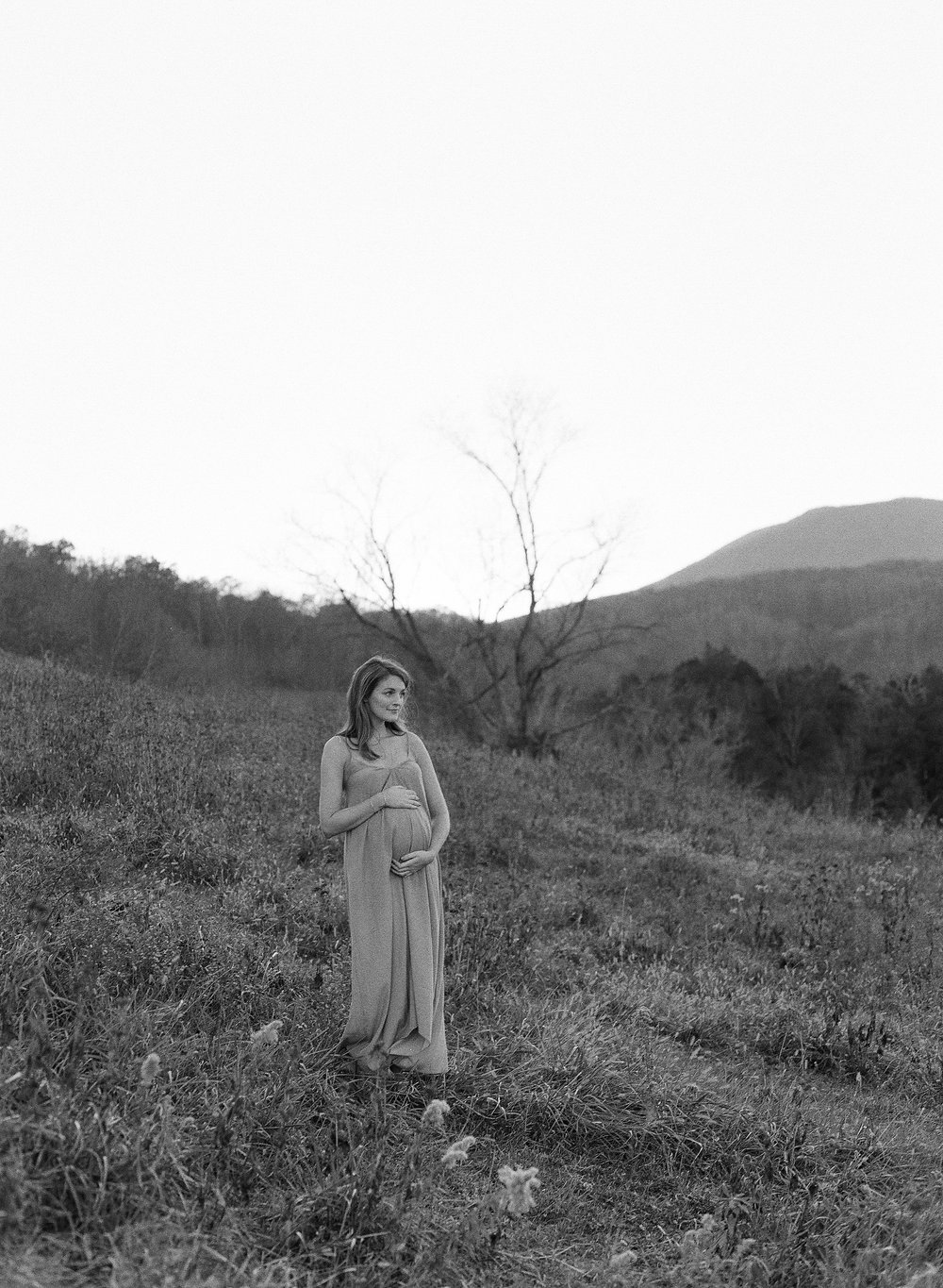 mallory joyce maternity by laura gordon