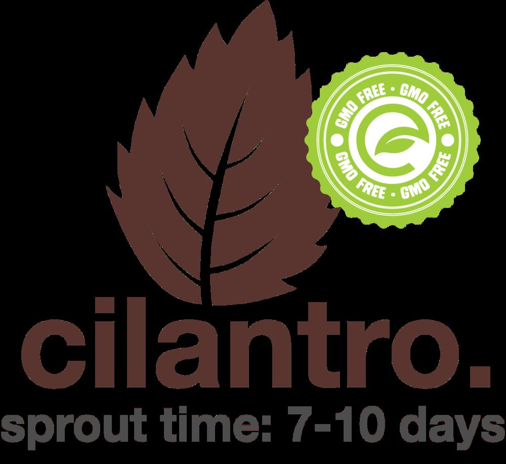 Cilantro.png