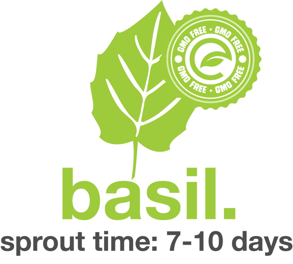 Basil.png