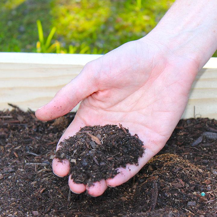 1_Selecting_Soil.jpg