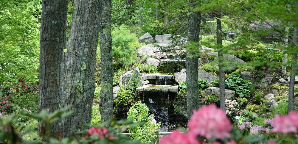 Giles-Rhododendron-Garden-Symposium-1600x775.jpg