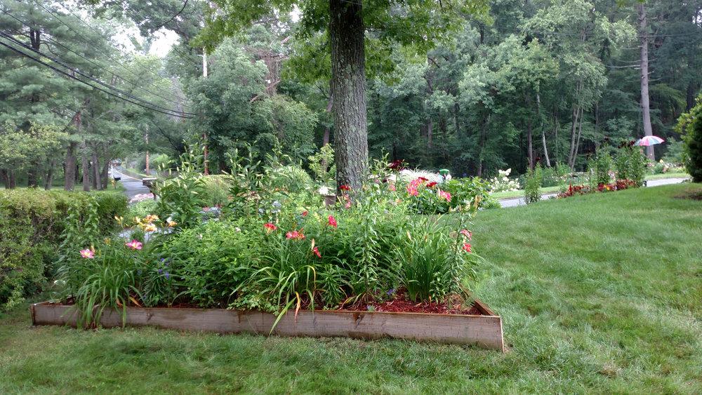 7-20-18 Shapiro Garden 4.jpg