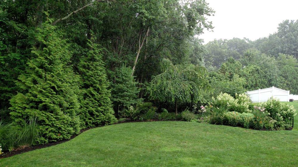 7-23-18 Singhal Garden (118).jpg