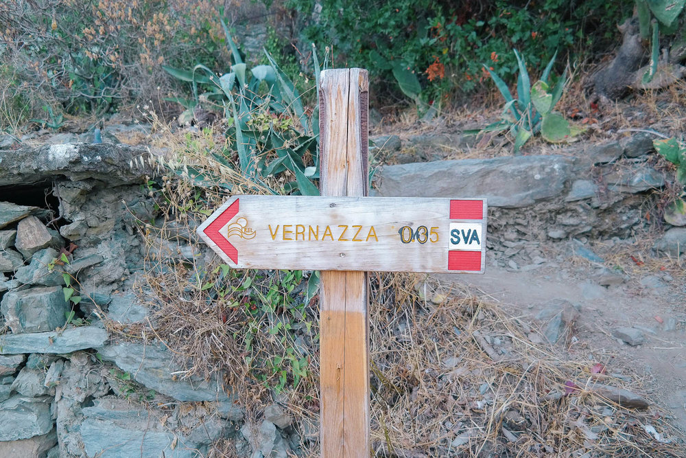 Cinque Terre is famous for its hiking trails. Here's everything you need to know about them!