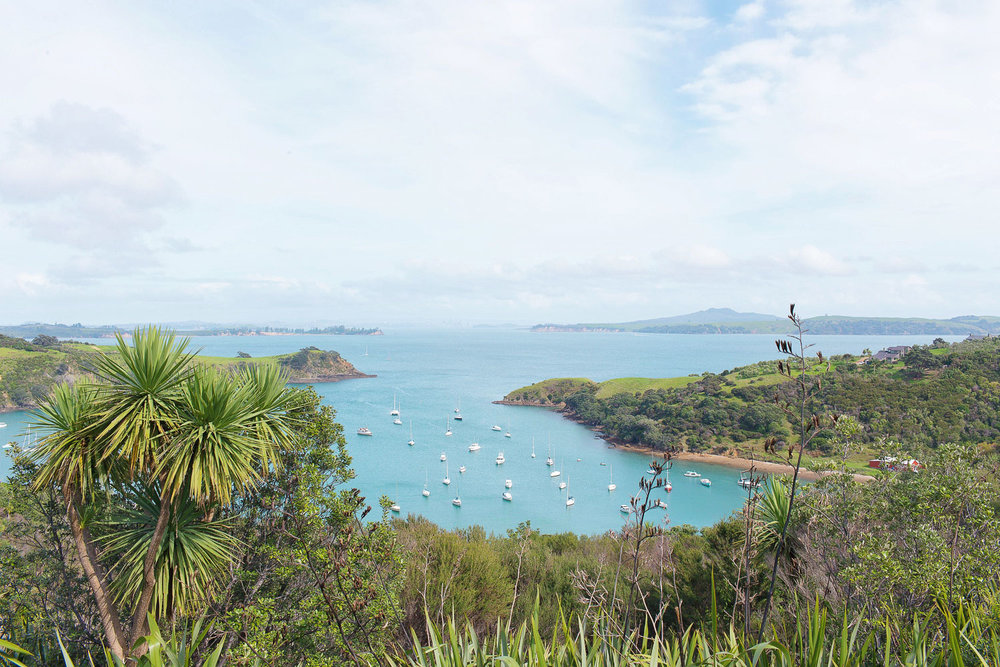 A beautiful bay in Waiheke Island, New Zealand, located just 40 minutes by ferry away from Auckland