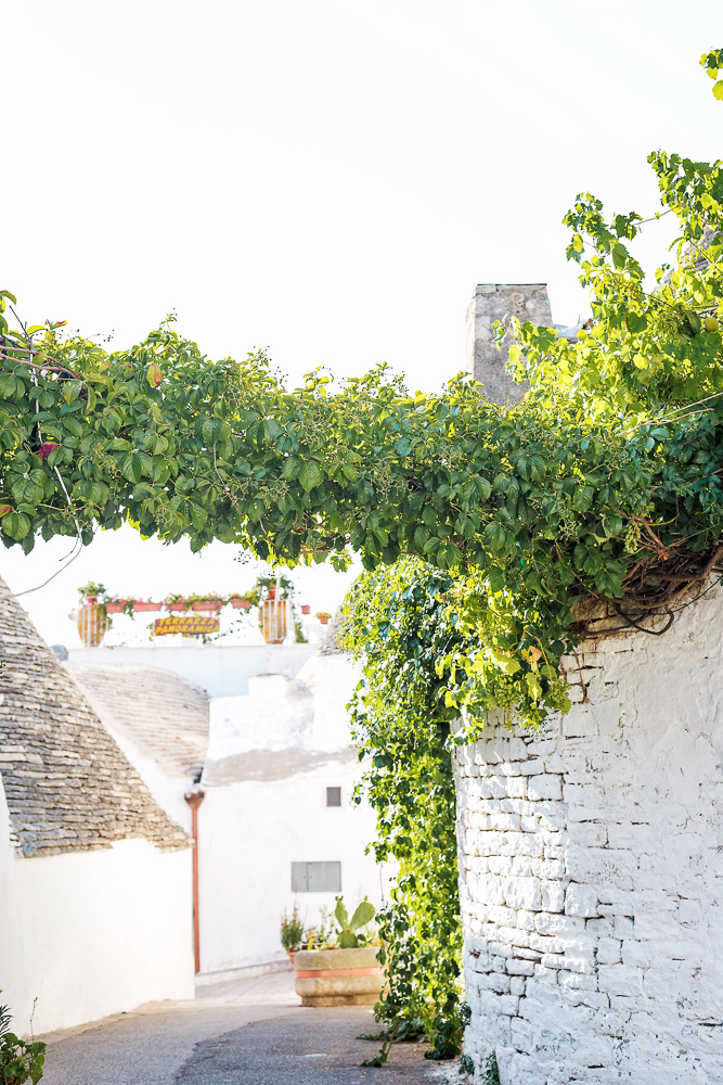 Golden hour in picturesque Alberobello