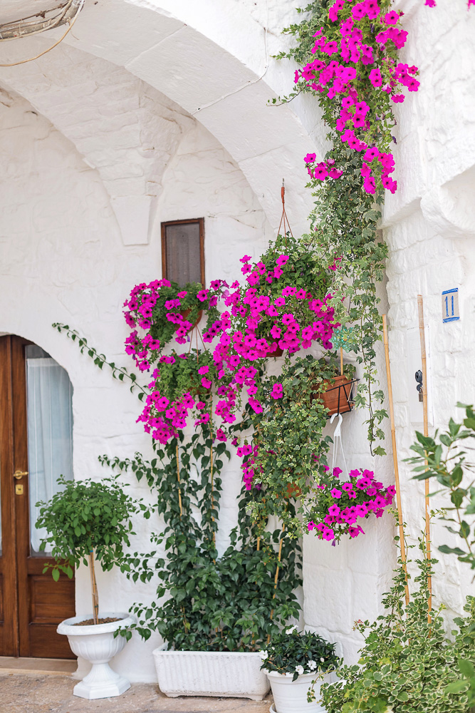 Colorful flowers in an otherwise all-white street in Puglia