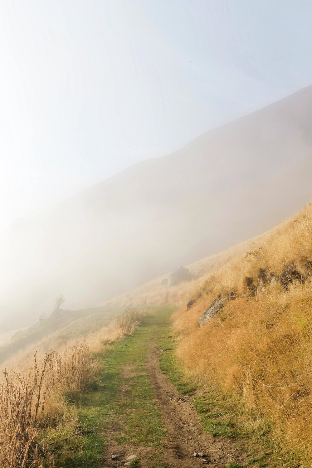 Foggy views during the hike to Roys Peak in New Zealand