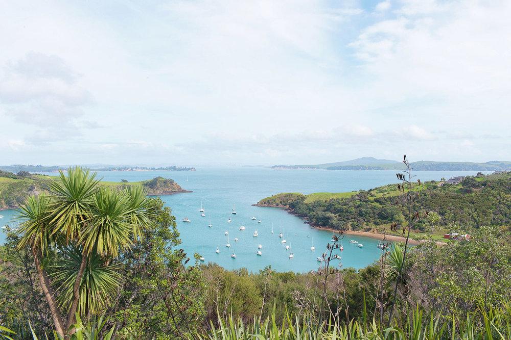 WAIHEKE ISLAND -