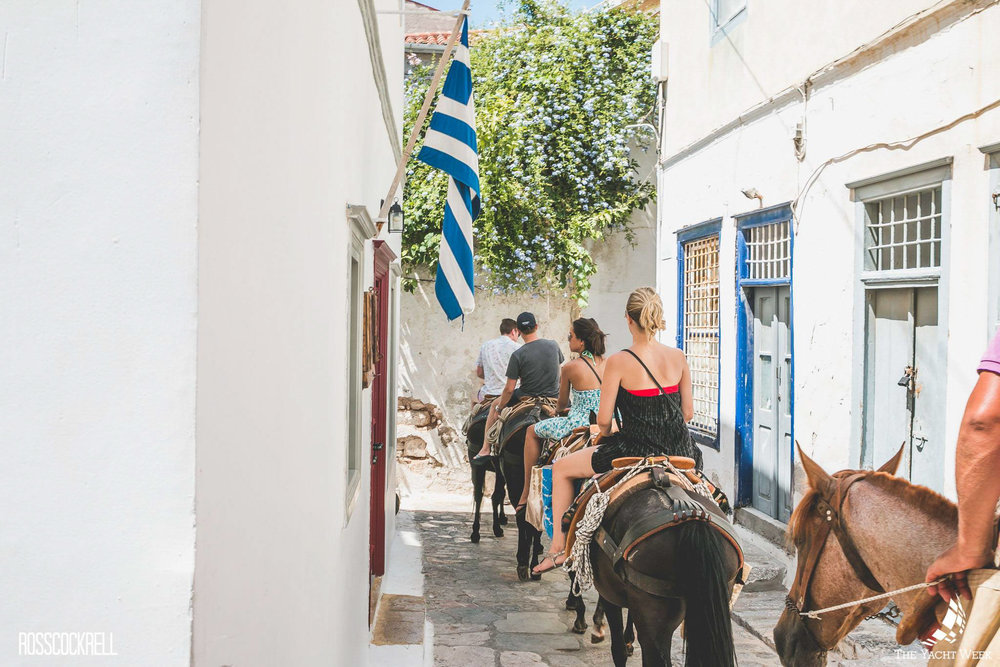 Donkey rides at The Yacht Week in Hydra, Greece!