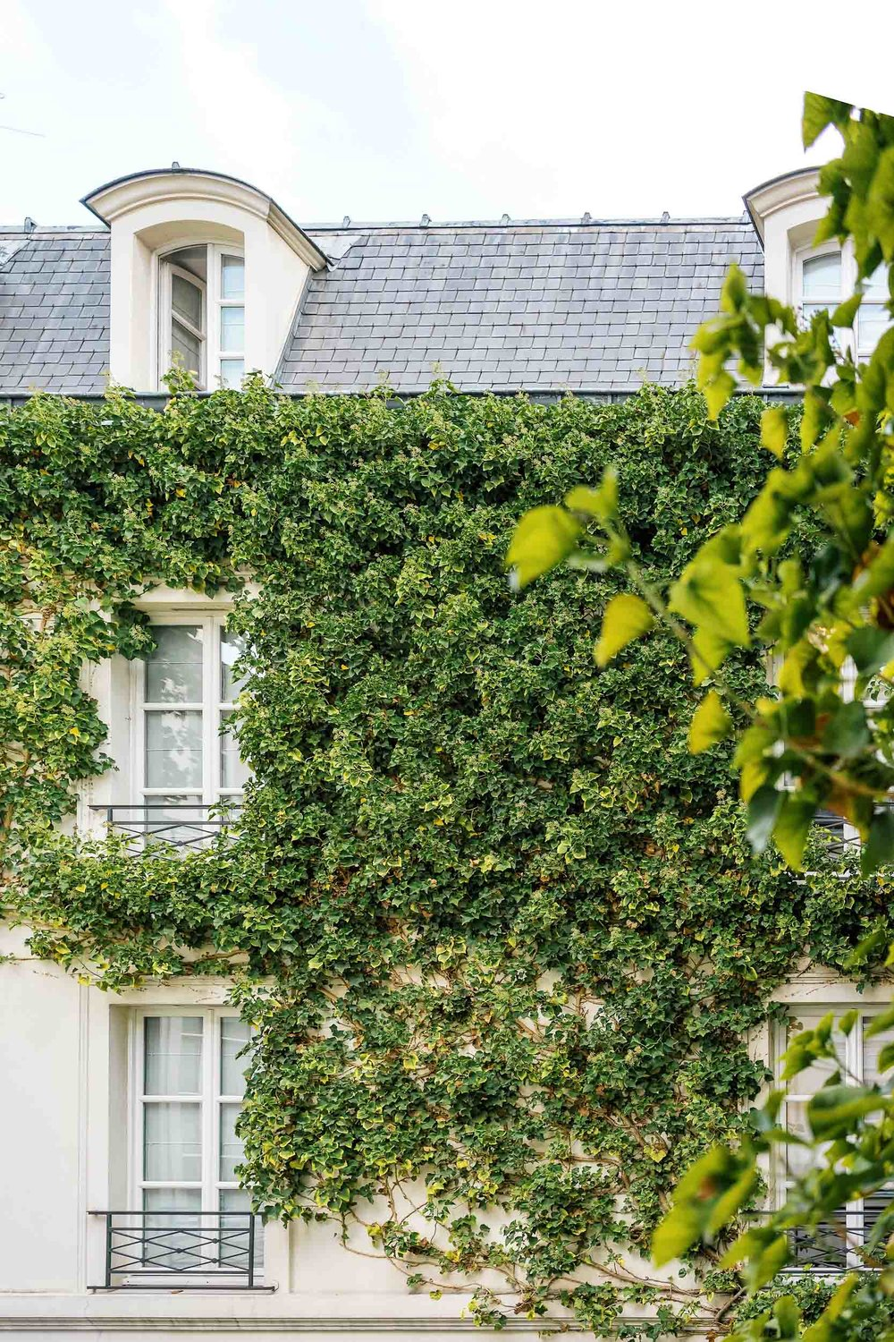 A window view from Pavillon de la Reine.  A can't miss while in Paris!