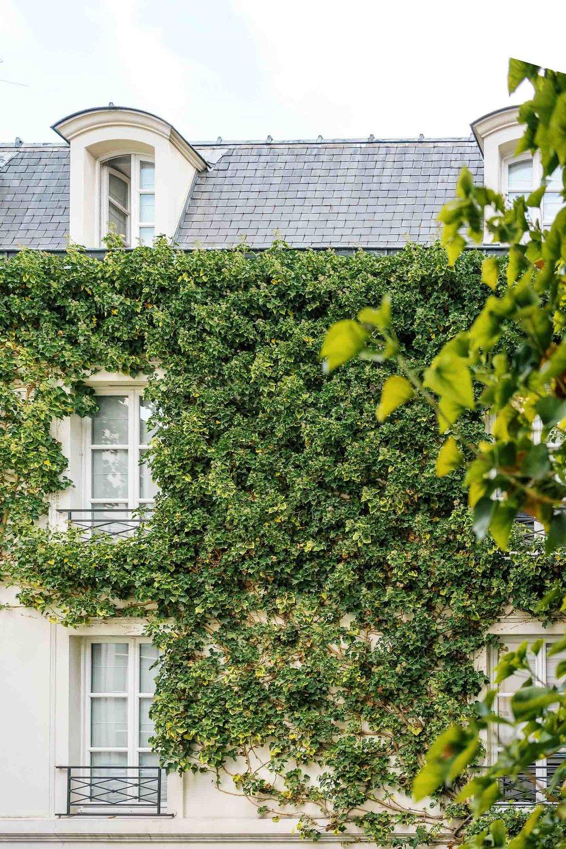 A window view from Pavillon de la Reine.  A can't miss spot on your Paris itineraries
