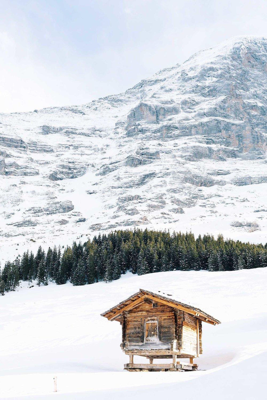 A lone log cabin in Switzerland