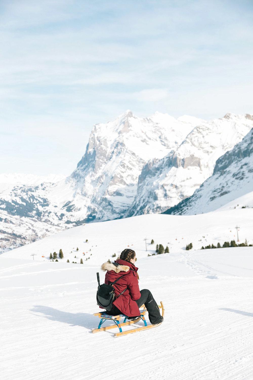 Sledging in Grindelwald in the Jungfrau Region of Switzerland