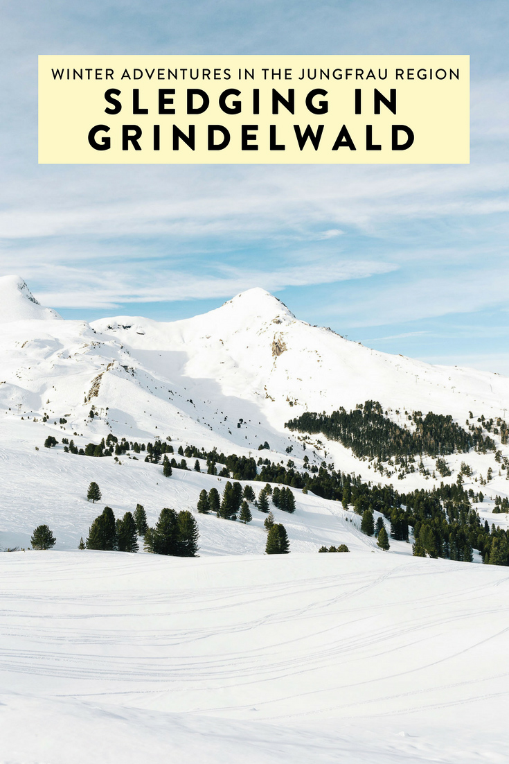 Sledging in Grindelwald in the Jungfrau Region is one of the most fun and exciting things I have done. If you plan to visit Switzerland during winter, don't miss this!