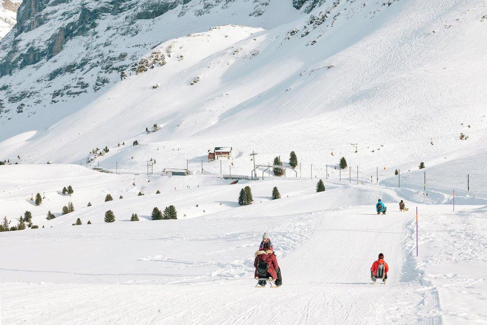 The beginning of the Eiger Sledge Run between Kleine Schiedegg and Grindelwald