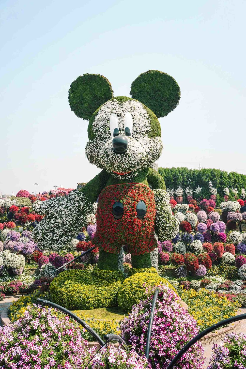 Mickey Mouse at the Dubai Miracle Garden