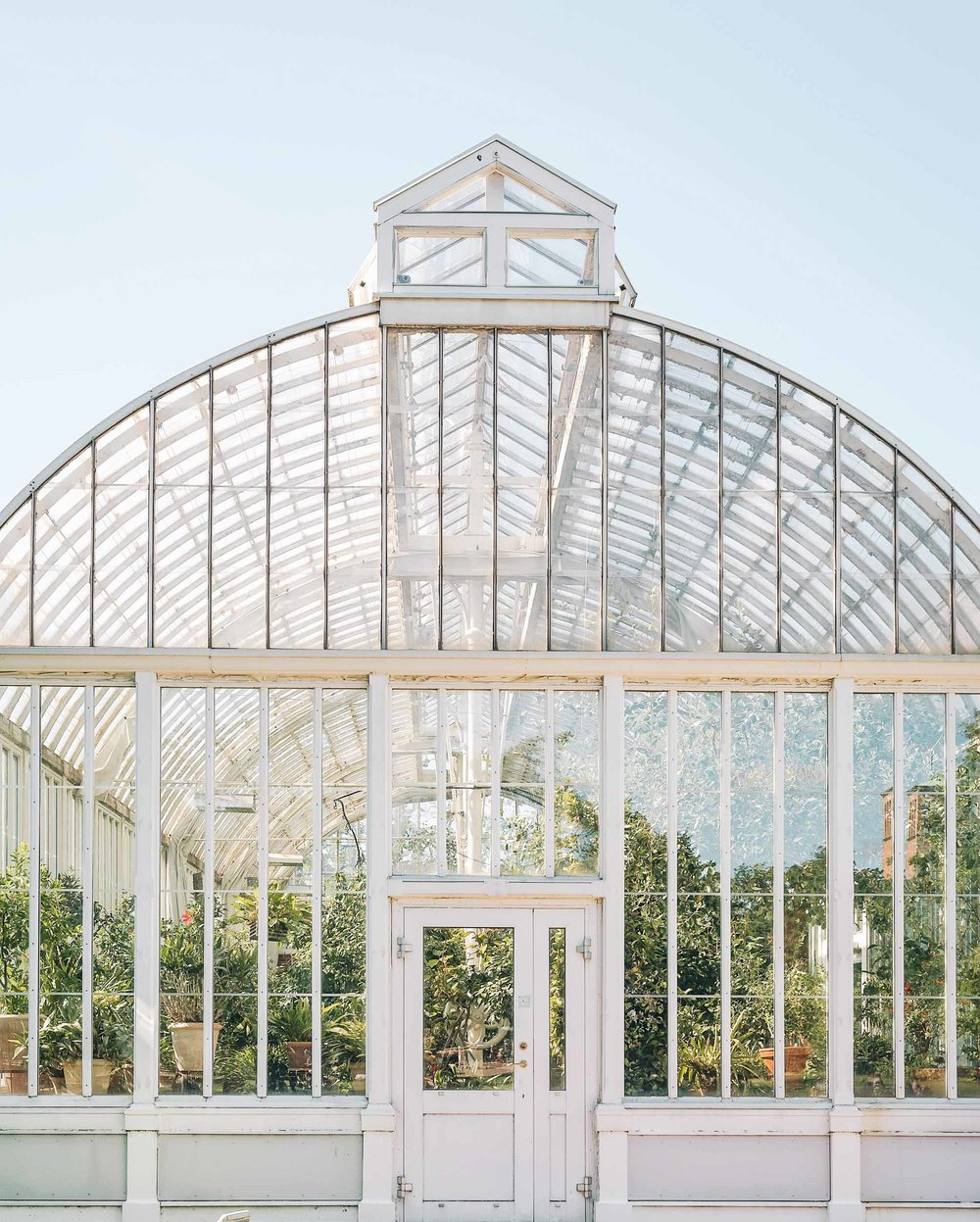 Visit the Palm House at Garden Society of Gothenburg