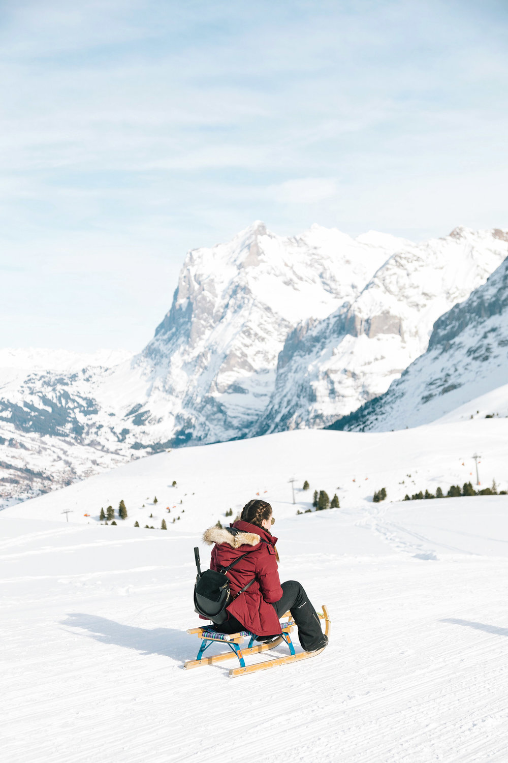 The most fun winter adventure in Switzerland - sledging!