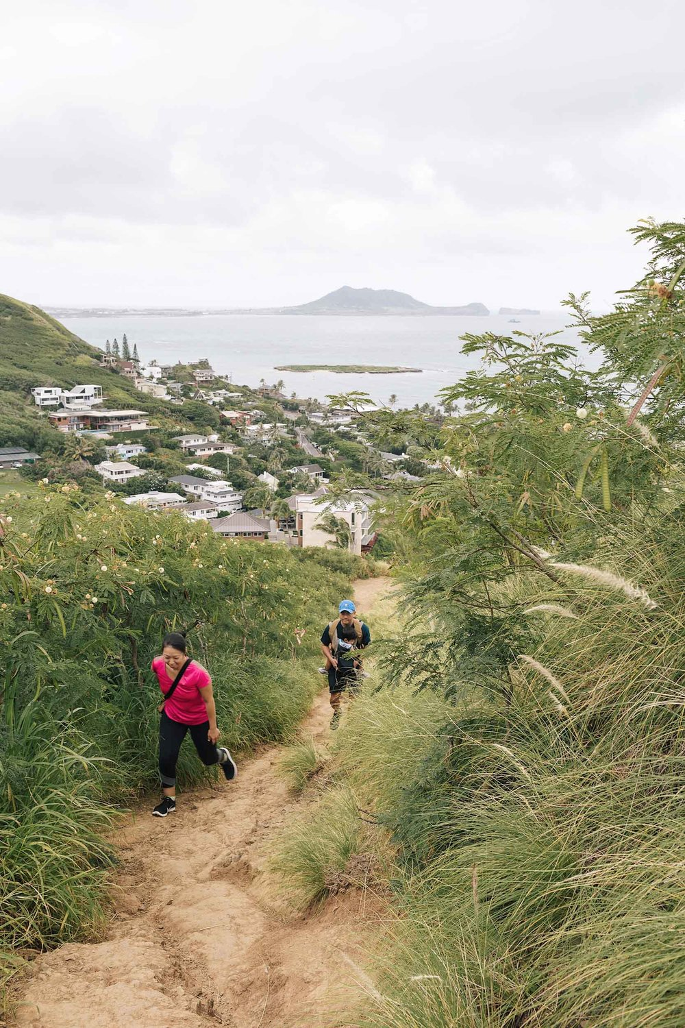Hikers about halfway up the Pillbox hike