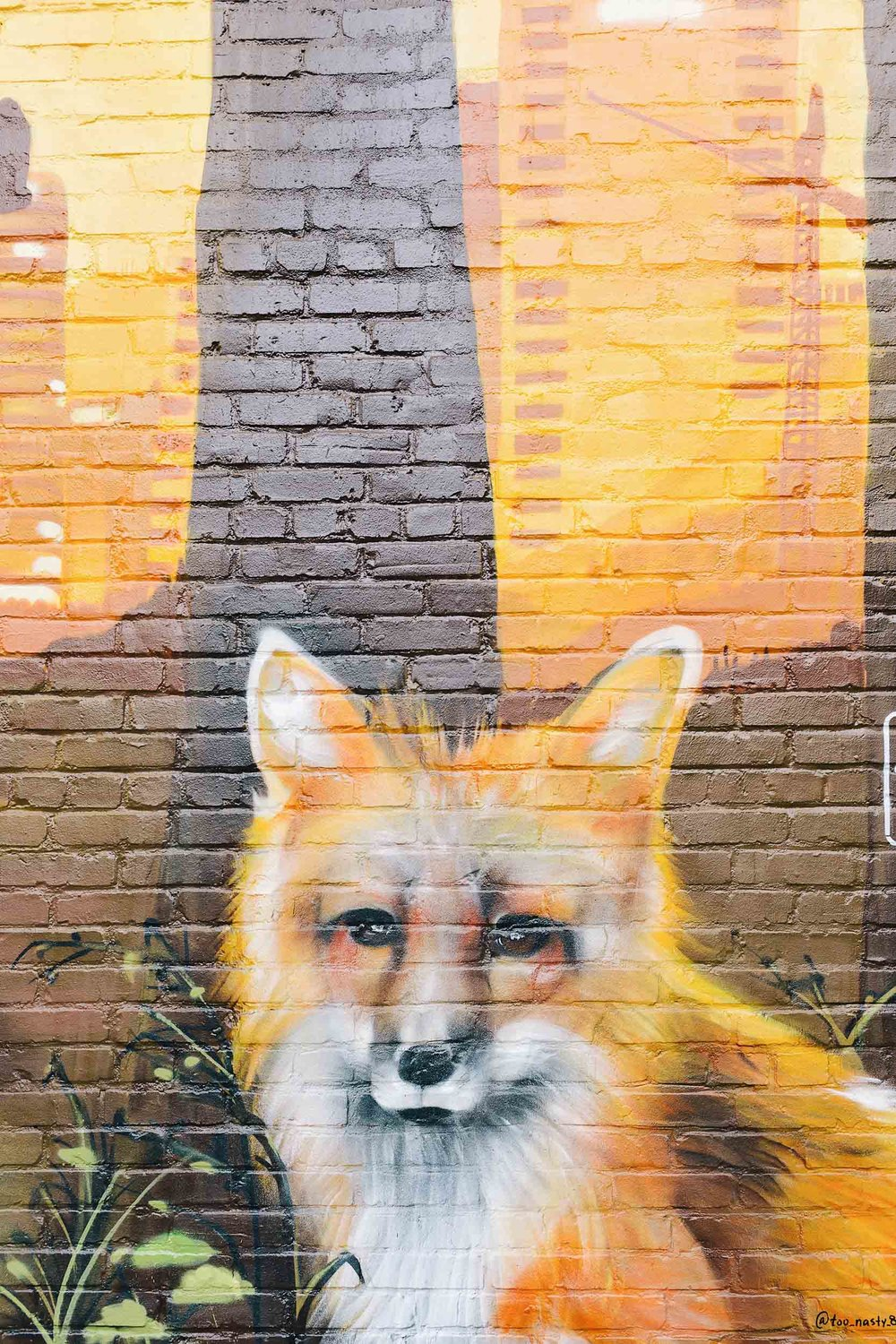 A cute fox mural in Nashville