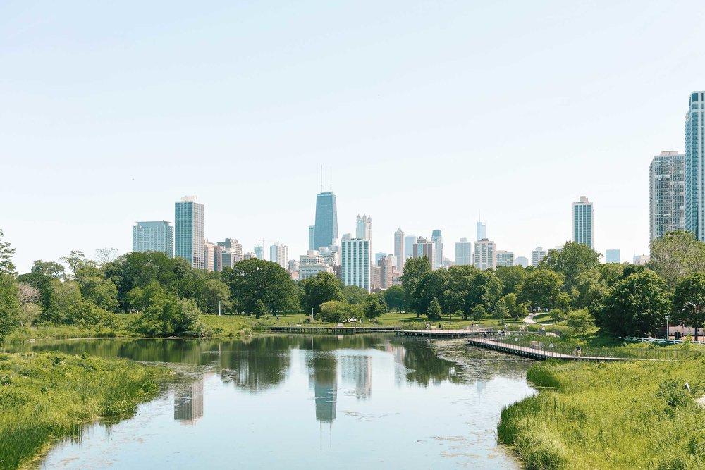 ckanani-chicago-21.jpg