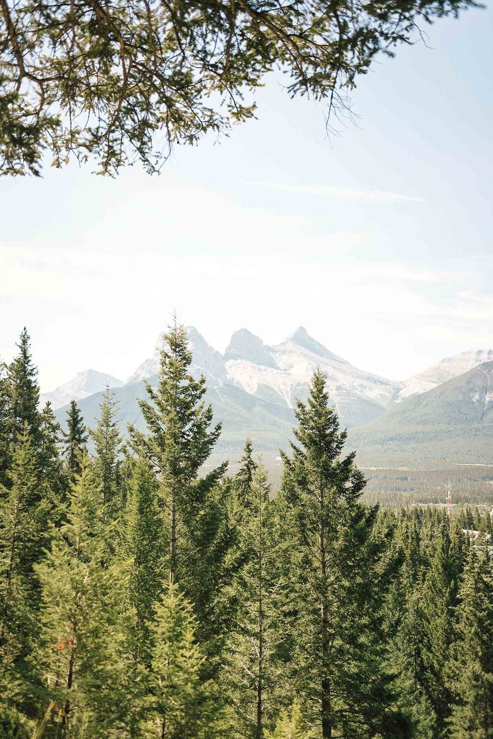 Three Sisters Mountains views from the rope swing in Canmore