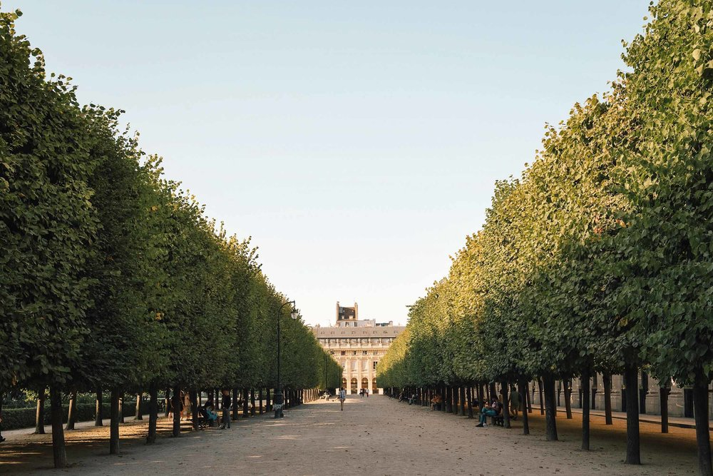 A first-timer's guide to Paris - when to visit
