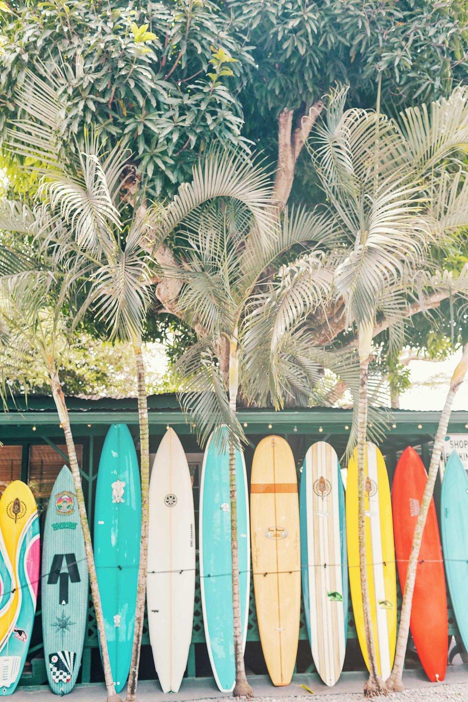 ckanani-hawaii-24.jpg