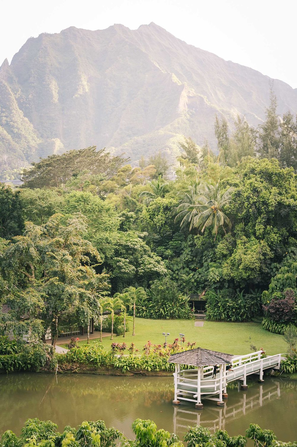 ckanani-hawaii-18.jpg