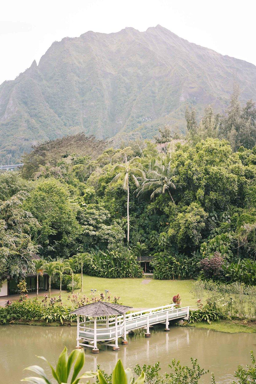 ckanani-hawaii-58.jpg